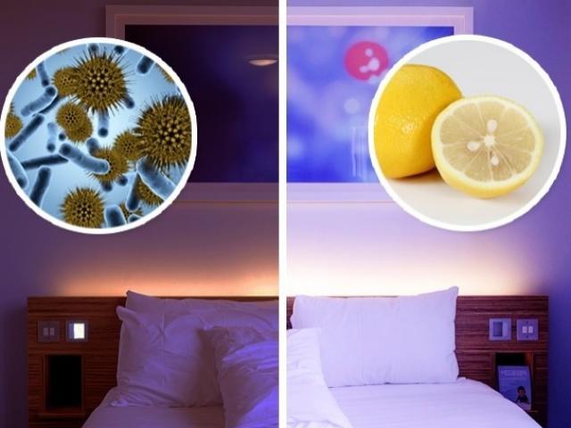 Đây là lý do người Nhật luôn để vài lát chanh trong phòng ngủ