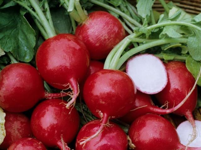 Những lợi ích thần kỳ của củ cải đường