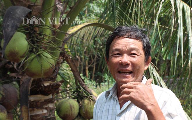 Clip: Mỗi tháng thu 24 triệu đồng từ trồng dừa bán quả nơi rốn phèn - 1