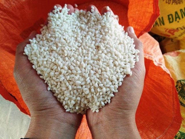 Bị Trung Quốc ép giá, gạo nếp xuất khẩu lại giảm mạnh còn 5.400đ/kg - 1