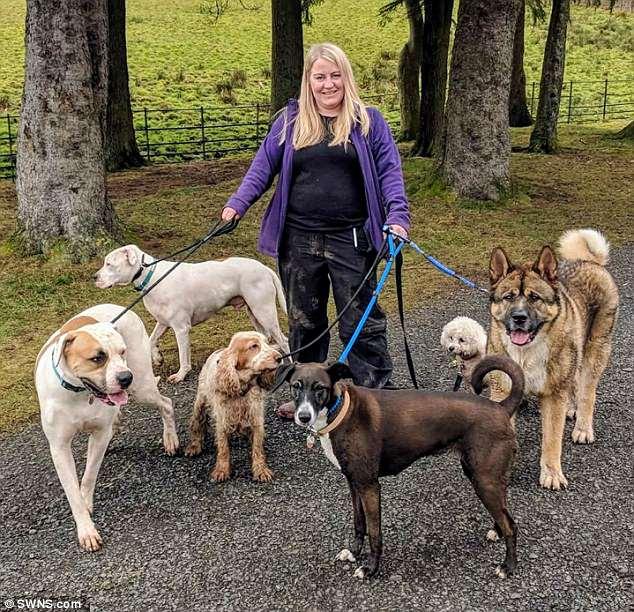 Anh: Chuyên gia về chó bị chính chó của mình tấn công kinh hoàng - 1