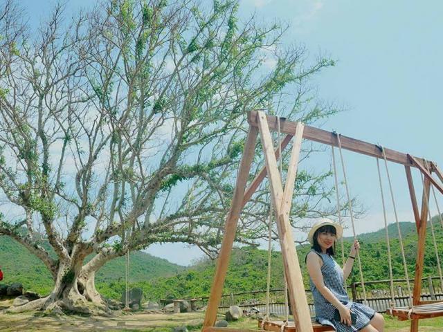 """Giới trẻ đứng ngồi không yên với trang trại """"sống ảo"""" nhất Phú Yên"""
