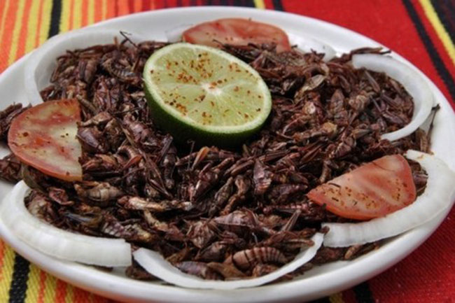 Tim rắn hổ mang chúa của Việt Nam lọt top 10 món ăn kinh dị nhất thế giới - 1