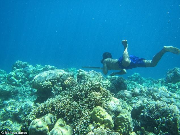 """Tộc người Indonesia tiến hoá """"như cá"""", lặn 13 phút không cần thở - 1"""