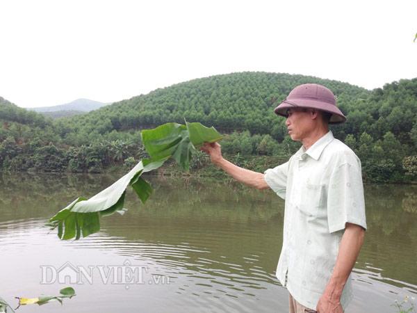 """Nuôi cá trên núi phục vụ """"cần thủ"""", dễ dàng bỏ túi trăm triệu/năm - 1"""