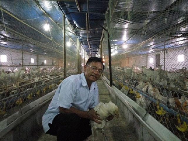 """""""Vua"""" gà đất Nam Định sở hữu 20.000 con gà, lãi 50 triệu đồng/tháng - 1"""