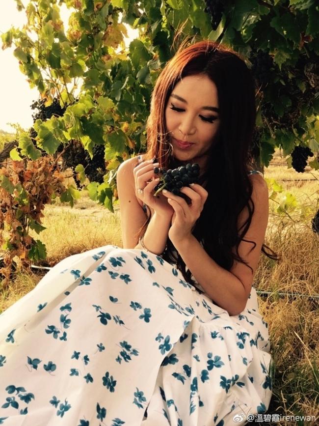 """Mới đây, diễn viên phim """"Bông hồng lửa"""" còn lấn sân sang lĩnh vực kinh doanh. Đầu năm nay, Ôn Bích Hà đã mua trang trại trồng nho ở miền nam Australia để sản xuất rượu vang."""