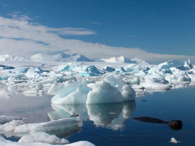 Kéo tảng băng khổng lồ từ Nam Cực để 4 triệu người có nước uống