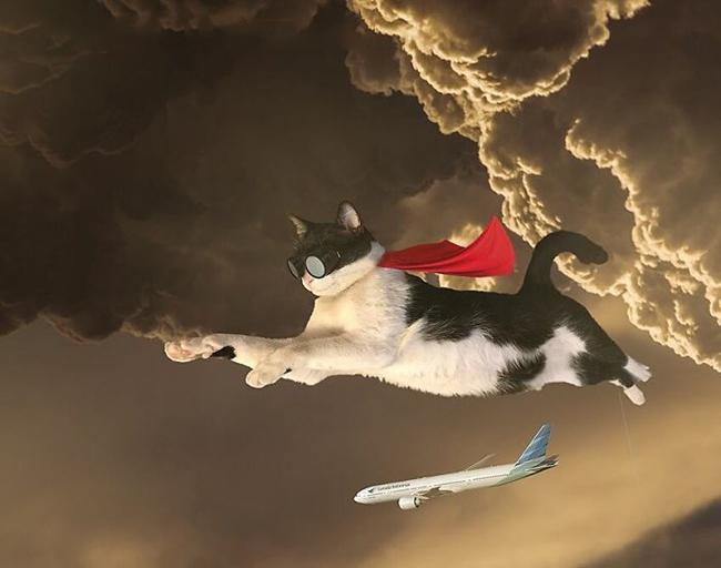 """""""Boss siêu anh hùng"""" đến giải cứu trái đất đây."""