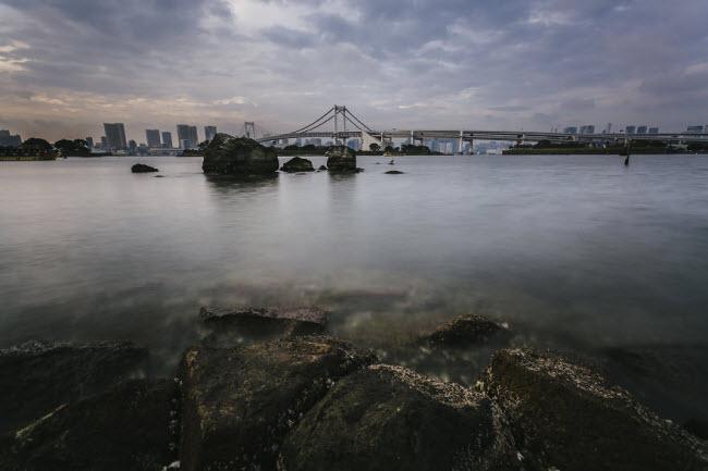 Vịnh Tokyo và cây cầu Cầu vồng nhìn từ đảo Odaiba.