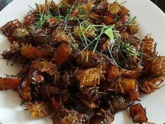 Bọ xít rang, món đặc sản Sơn La thách thức những tín đồ ẩm thực