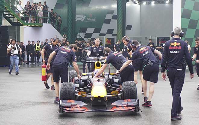 Dàn mỹ nhân Việt nóng bỏng đến xem huyền thoại F1 trổ tài - 1