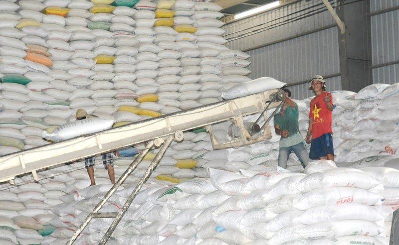 Gạo Việt trúng hợp đồng 'khủng' xuất sang Philippines - 1