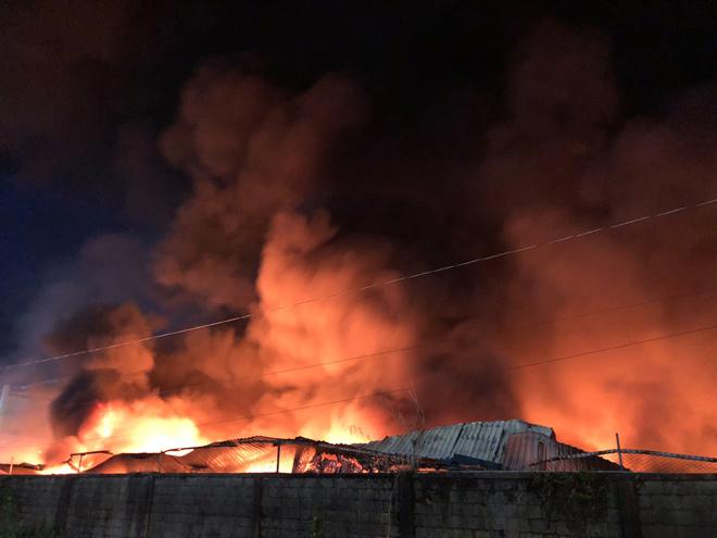 Hơn 100 cảnh sát vật lộn với lửa đỏ tại công ty giấy ở SG - 1