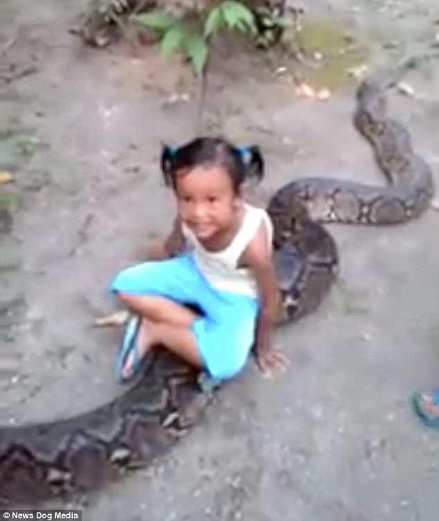 2 bé gái Indonesia hồn nhiên cưỡi trăn khổng lồ - 1