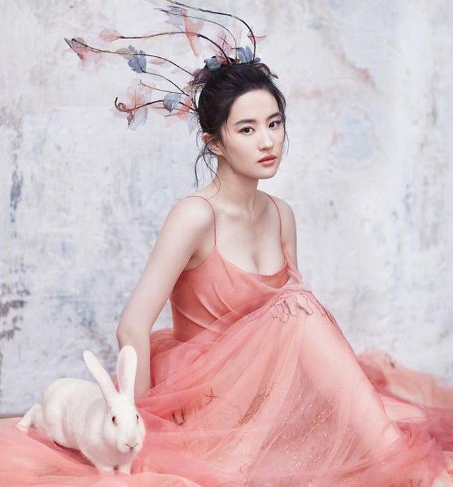 Lưu Diệc Phi, Triệu Lệ Dĩnh, Đường Yên, Lưu Thi Thi là 4 nữ thần Kim Ưng gây chú ý nhất màn ảnh Hoa ngữ. Trong đó, Lưu Diệc Phi là nữ thần trẻ nhất vì nhận được vinh dự này lúc 19 tuổi, Đường Yên là nữ thần già nhất, Triệu Lệ Dĩnh là nữ thần đẹp nhất còn Lưu Thi Thi là nữ thần múa đẹp nhất.