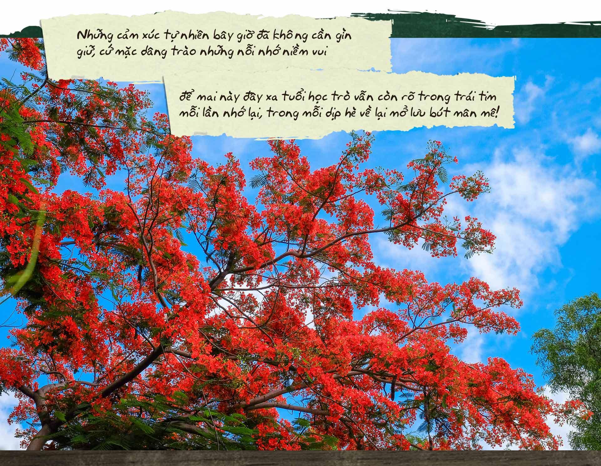 Lưu bút ngày xanh, buồn vui tuổi hồn nhiên tinh nghịch - 9