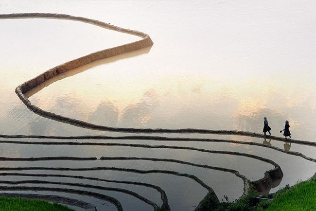 Lên Mù Cang Chải ngắm ruộng bậc thang mùa nước đổ - 1
