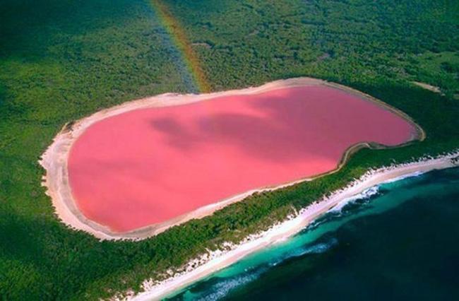Bí ẩn hồ nước màu hồng đầy ảo diệu - 1