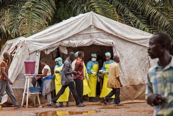 Bộ Y tế họp khẩn, xác định nguy cơ dịch bệnh Ebola vào Việt Nam - 1