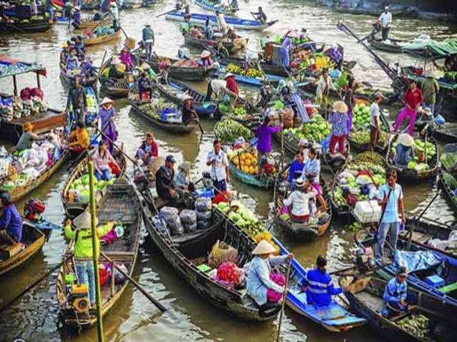 Đến Vĩnh Long để trở về tuổi thơ: Lội ruộng bắt cá, trèo cây hái quả