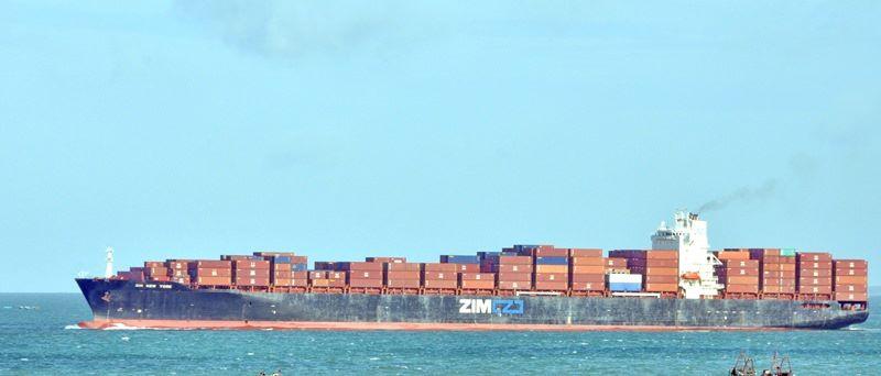 Đình chỉ hoa tiêu dẫn tàu container Hồng Kông mắc cạn - 1