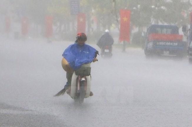 Siêu áo mưa cho sếp giá 1 triệu đồng/bộ là áo mưa gì? - 1