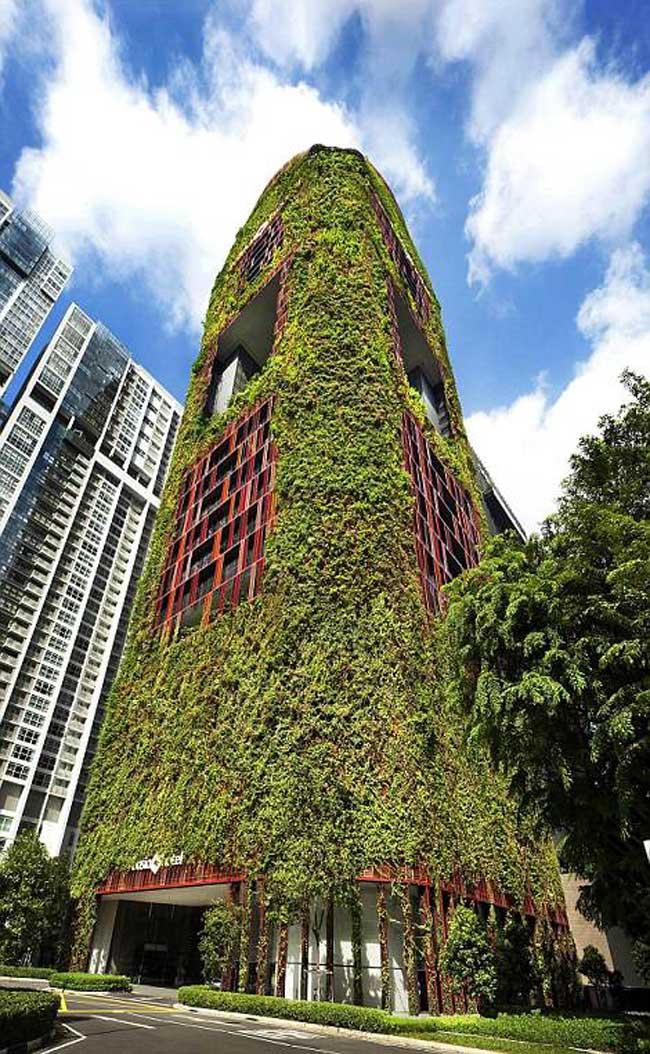 Mặt tiền tòa nhà phủ đầy cây xanh