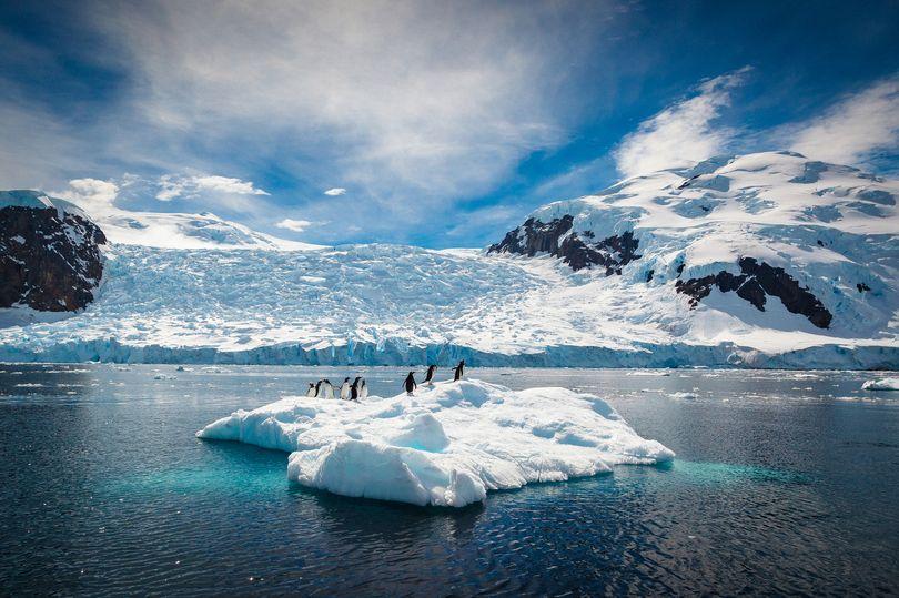 Nam Cực mất 3 nghìn tỷ tấn băng, khiến nước biển dâng cao - 1
