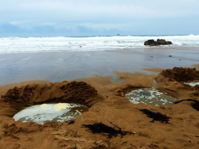 Bãi biển nước nóng, New Zealand: Nếu tới bãi biển này, bạn sẽ thấy du khách đào các hố trên cát và nằm trong đó. Nước thấm qua cát ở đây rất ấm và dễ chịu.