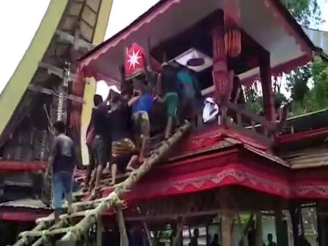 Indonesia: Con trai chết thảm vì bị quan tài của mẹ đè