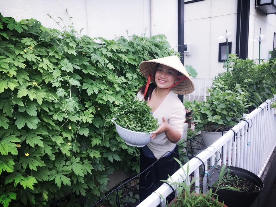 Khu vườn xanh mát bội thu rau quả sạch đáng nể của mẹ Việt ở Nhật - 1