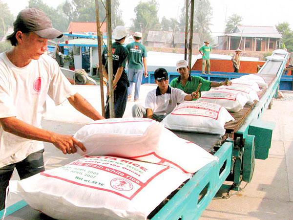"""Giá gạo xuất khẩu """"lên đỉnh"""", vượt cả """"ông trùm"""" Thái Lan - 1"""