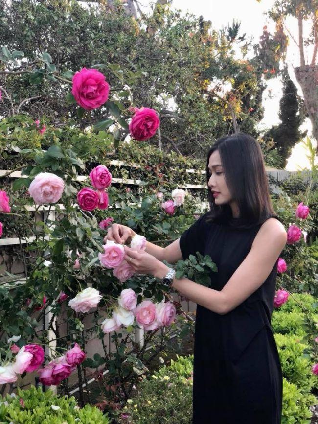 Tình cũ Bằng Kiều khoe vườn ngập hoa hồng và cây ăn quả - 1