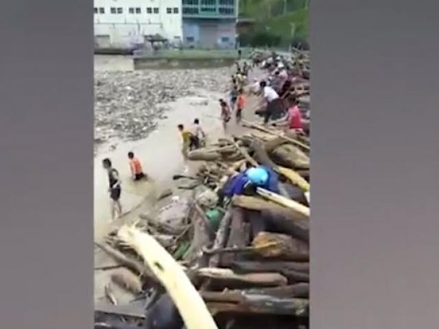 Video: Kinh hoàng trận lũ ở các tỉnh phía Bắc