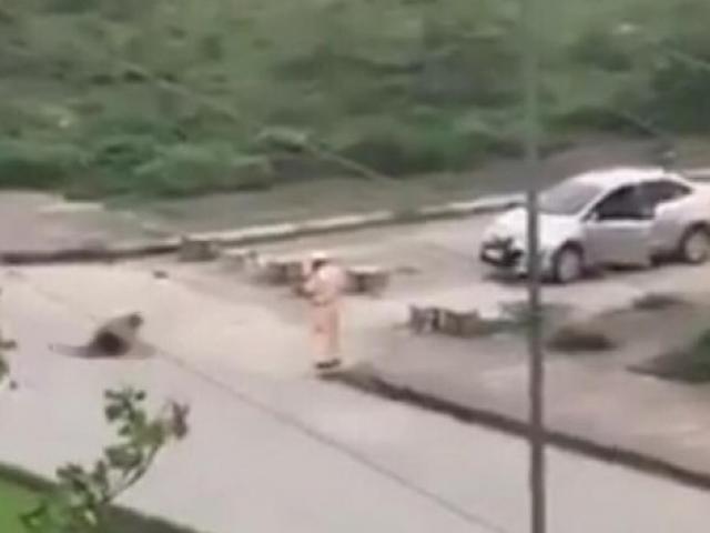 Vụ thanh niên đè bạn gái xuống đường rồi đâm chết: CSGT đứng nhìn phải tường trình