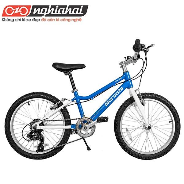 Tiêu chuẩn cần thiết để chọn mua xe đạp cho con - 1