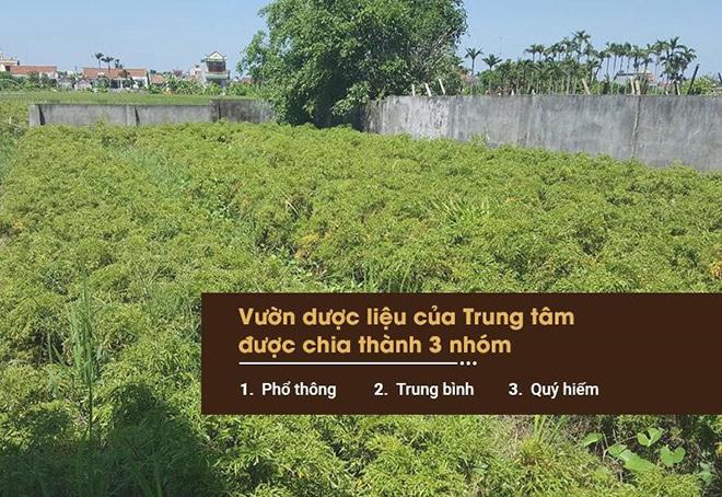 Công ty Da liễu Đông y Việt Nam: Tự chủ nguồn dược liệu để tạo nên sản phẩm sạch - 1