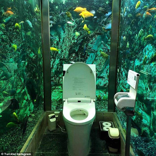 Trải nghiệm đi toilet giữa bể cá khổng lồ tại quán cà phê Nhật - 1