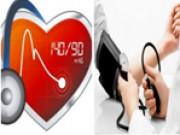 Kiểm soát nguy cơ đột quỵ do tăng huyết áp nhờ thảo dược này