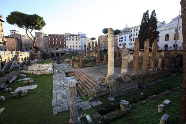 Largo di Torre Argentina, Italia: Quảng trường ở thành phố Rome là nơi Julius Caesar bị ám sát. Địa điểm này hiện là nơi sinh sống của hơn 100 con mèo hoang.