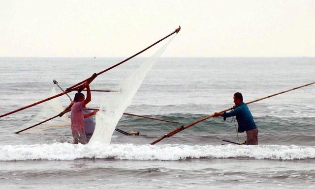 """Săn """"lộc biển"""" với ngư cụ tự chế, ngư dân bỏ túi tiền triệu mỗi ngày - 1"""