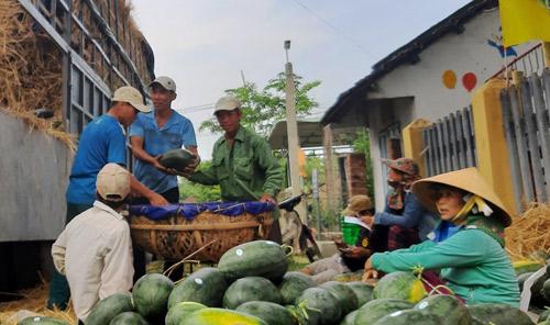 """Trung Quốc """"làm khó"""", xuất khẩu rau quả vẫn lấy lại """"phong độ"""" - 1"""