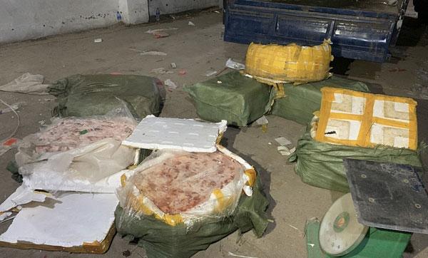 Thấy cán bộ kiểm tra, buôn lậu vứt thùng xốp có nầm lợn thối bỏ chạy - 1