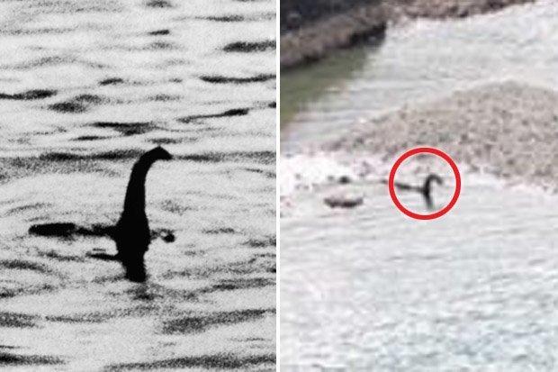 Quái vật hồ Loch Ness đã bơi đến Canada? - 1