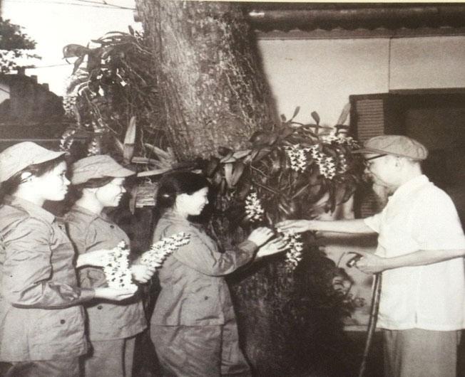 Ký ức của nữ dân quân 3 lần được gặp Bác Hồ - 1