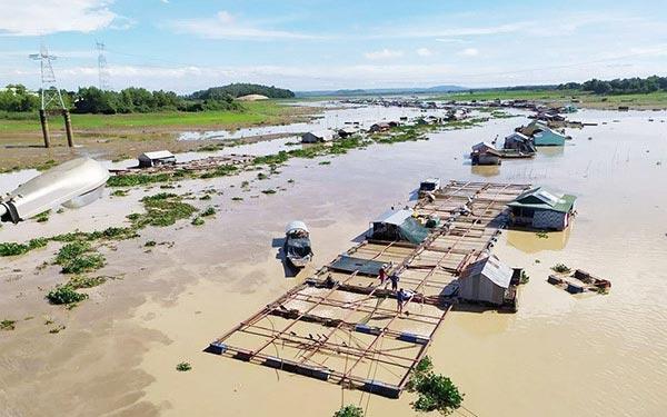 Đồng Nai: Hàng trăm tấn cá chết trên sông La Ngà là do... mưa to - 1