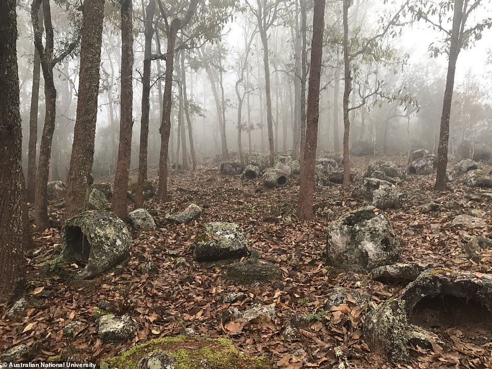 """Bí ẩn hàng trăm chiếc """"chum của người chết"""" hơn 1.000 năm tuổi tại Lào - 1"""