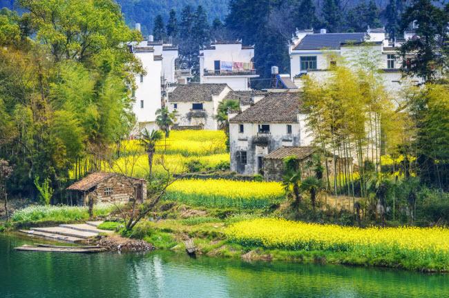 Hồ nước, cánh đồng hoa và những ngôi nhà cổ tạo nên phong cảnh đẹp tựa tranh vẽ.