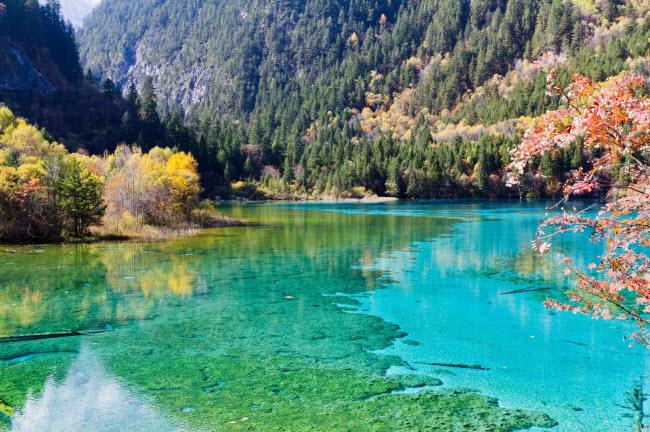 6. Khu thắng cảnh Cửu Trại Câu: Thung lũng ở tỉnh Tứ Xuyên có hệ sinh thái đa dạng bao gồm hang động, sông, rừng, thác và hồ.